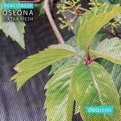 Przedstawiamy zdjęcia z bliska - nasz jeden z najnowszych projektów, wydrukowany na osłonie z siatki 🥰   #matanabalkon #osłonabalkonowa #osłonanabalkon #osłona #oslona #oslonabalonowa #matanapłot #matanaogrodzenie #osłonanapłot #osłonapłotu